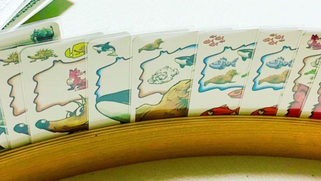 カードゲームのゾフィンズー