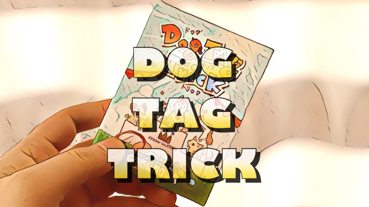 dog tag trick