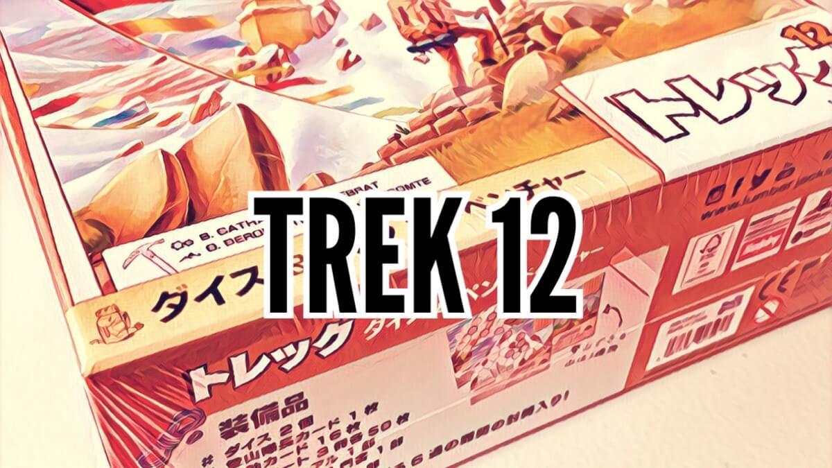 TREK 12